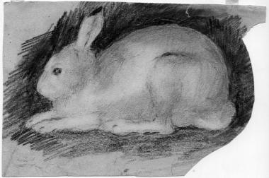 Hare. The drawing from outside. Pencil on paper 13х19,5. <br>KM, Г-175.
